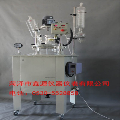 XYDF100单层玻璃反应釜 鑫源玻璃反应釜